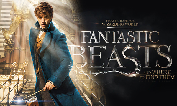 Bildresultat för fantastic beasts and where to find them